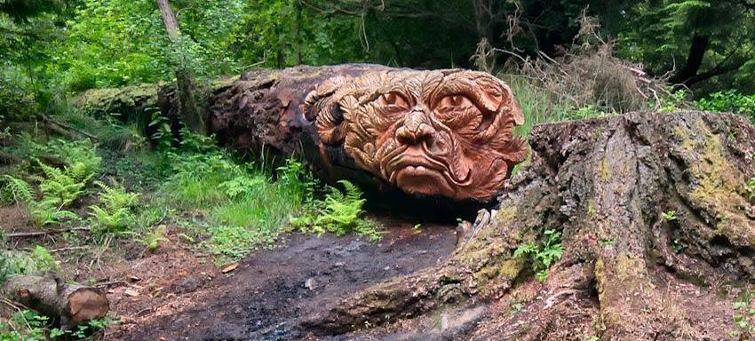Tommy craggs baumskulpturen auf creativ